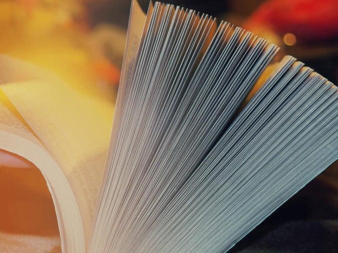 aantal paginas in je boek